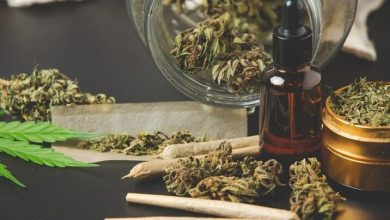 Photo of Everything You Need to Know About Medical Cannabis