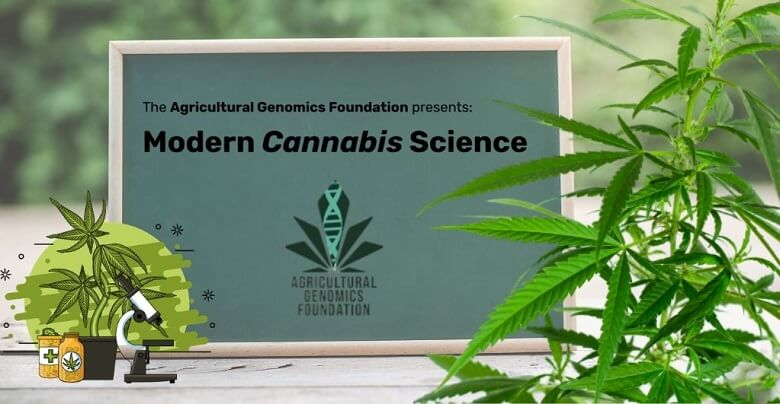 University of Colorado to Add Cannabis-based Course Soon