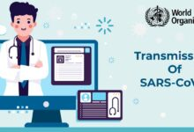 Photo of Transferal of SARS-CoV-2: A Brief Overview