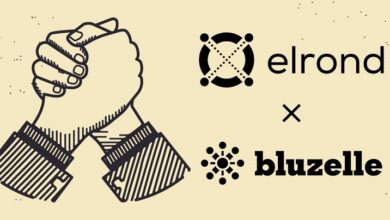 Photo of Bluzelle To Yield Scalable Decentralization to Apps Built on Elrond